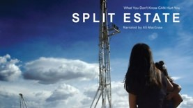 Split-Estate-movie-1