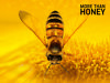 more-than-honey-poster