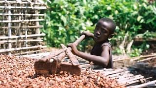 Ivory-Coast-Chocolate-Child-Labor-Slavery